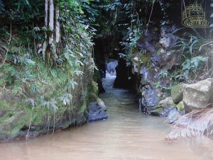 Bateia - canal