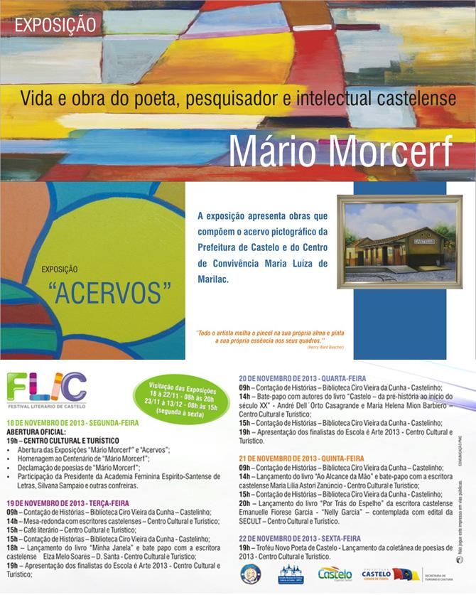 FLIC - folder - verso cópia